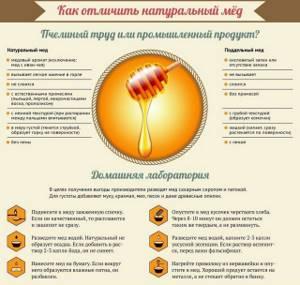 Аллергия на мед: возможные проявления и опасности