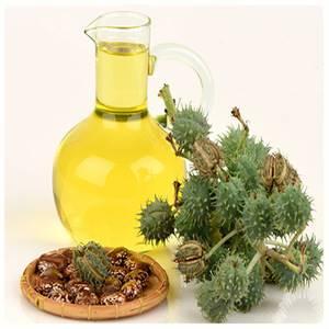 Касторовое масло: инструкция по применению, показания и противопоказания, наружное и внутреннее использование