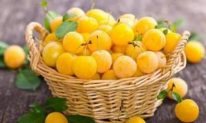 Алыча: полезные свойства кисло-сладких плодов