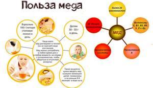 Мед при желчнокаменной болезни — тайны эффективного лечения