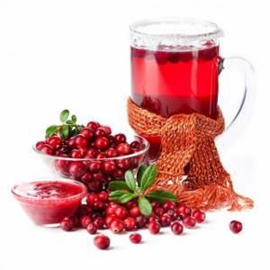 Клюква при грудном вскармливании: полезные свойства болотной ягоды