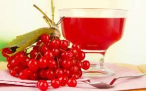Настойка из калины – вкуснейшее лекарство