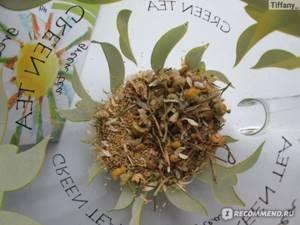 Отвар ромашки – его хвалят травники и одобряет официальная медицина