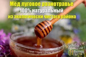 Горный мед: живительная сила экологически чистого продукта