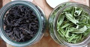 Копорский чай – в домашнюю аптечку