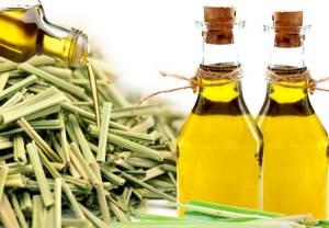 Масло лемонграсса: свойства и применение, как и из чего его получают, духи с эфиром и другие полезные рецепты использования