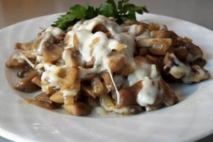 Салат из петрушки: сырный, томатный, грибной и мясной
