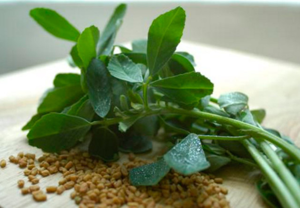 Пажитник: что это такое, какими свойствами обладает это растение, как его применяют и есть ли у него противопоказания