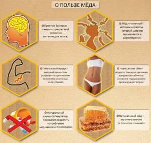Сосновый мед: сделан человеческими руками