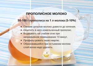 Лечение желудка прополисом — лучшие рецепты